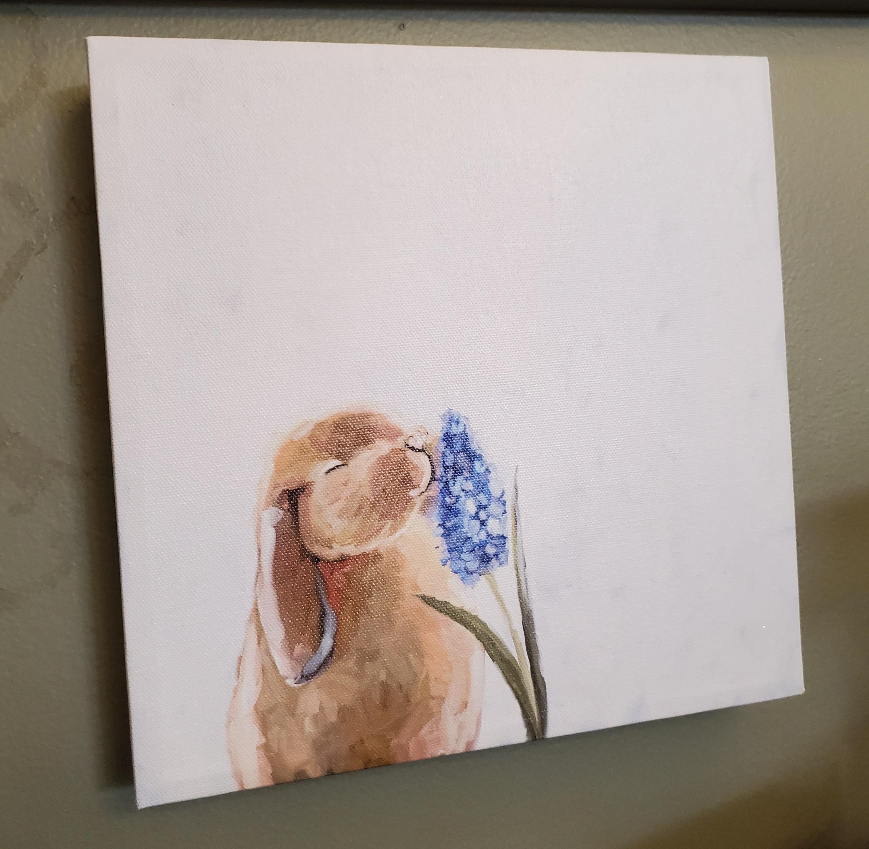 bunny with hyacinth